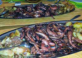 Hobotnica plata